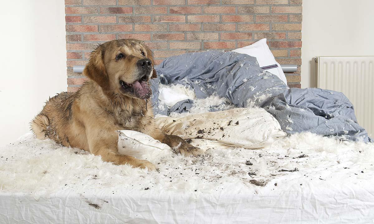 como tirar manchas das roupas de cama